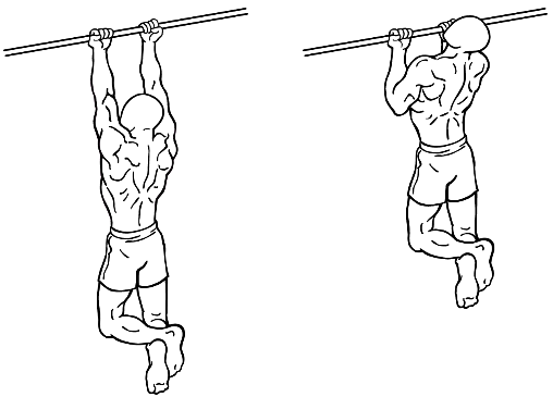 Dan Baker's explanation of the chin up